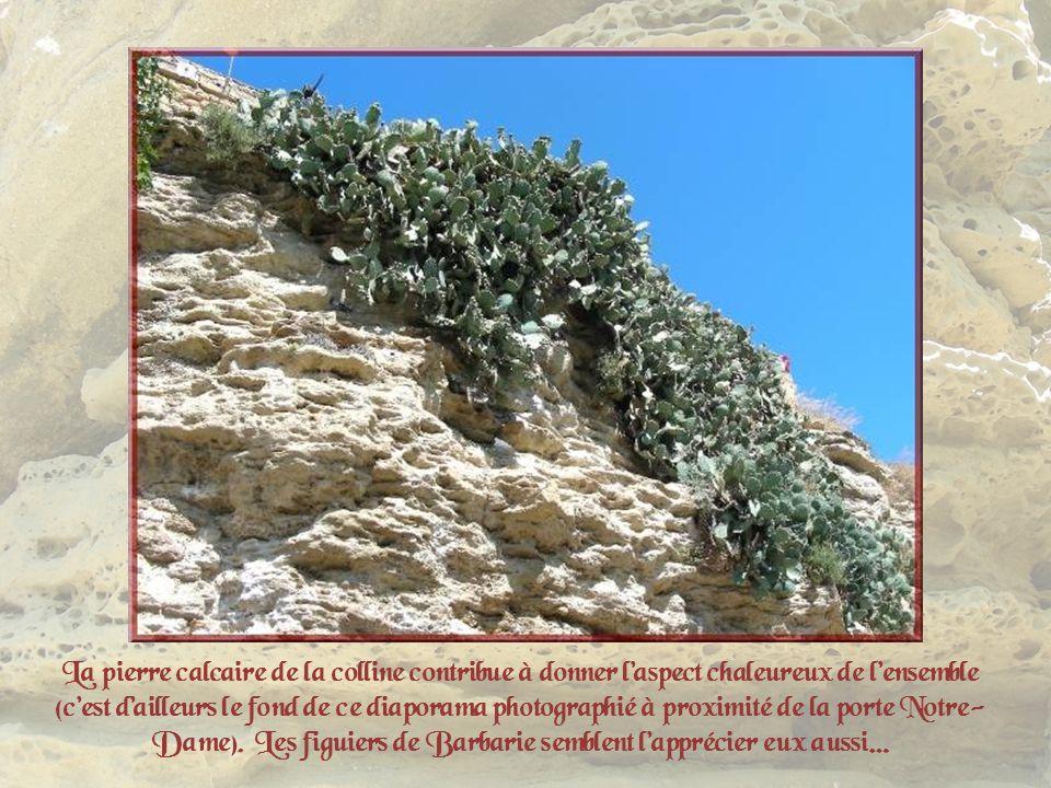 La pierre calcaire de la colline contribue à donner l'aspect chaleureux de l'ensemble (c'est d'ailleurs le fond de ce diaporama photographié à proximité de la porte Notre-Dame).