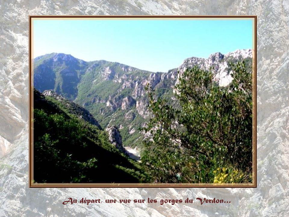 Au départ, une vue sur les gorges du Verdon…