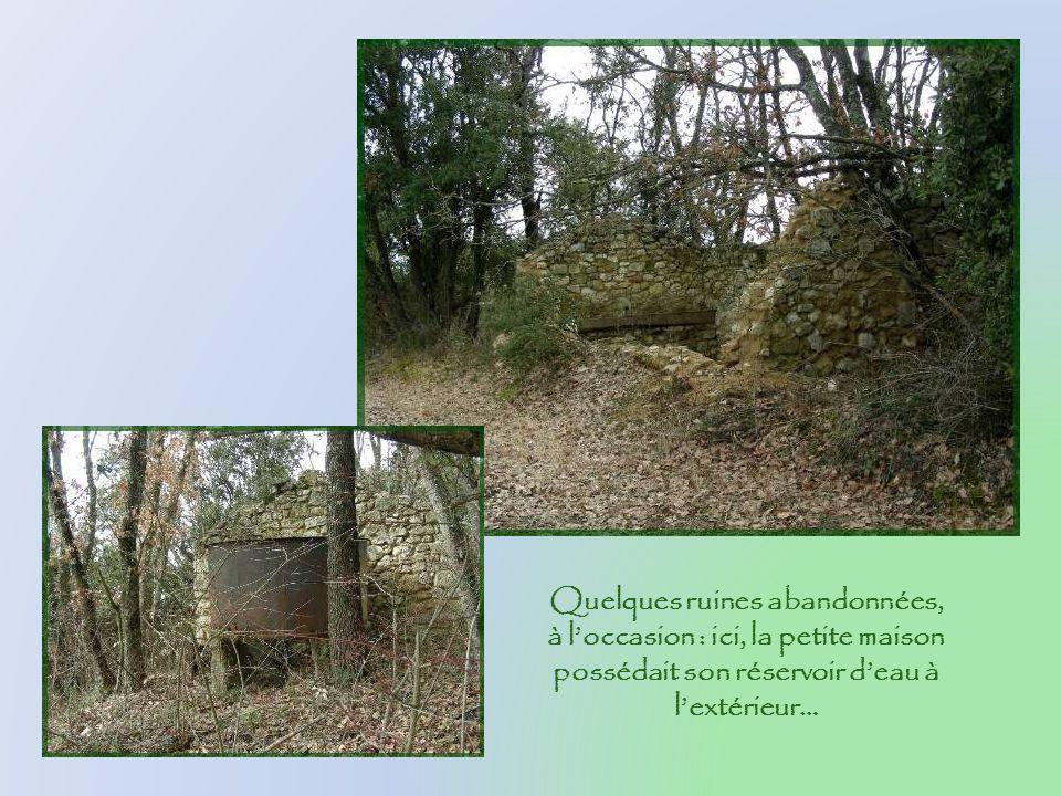 Quelques ruines abandonnées, à l'occasion : ici, la petite maison possédait son réservoir d'eau à l'extérieur…