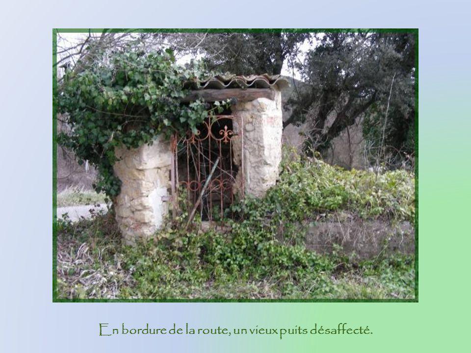 En bordure de la route, un vieux puits désaffecté.