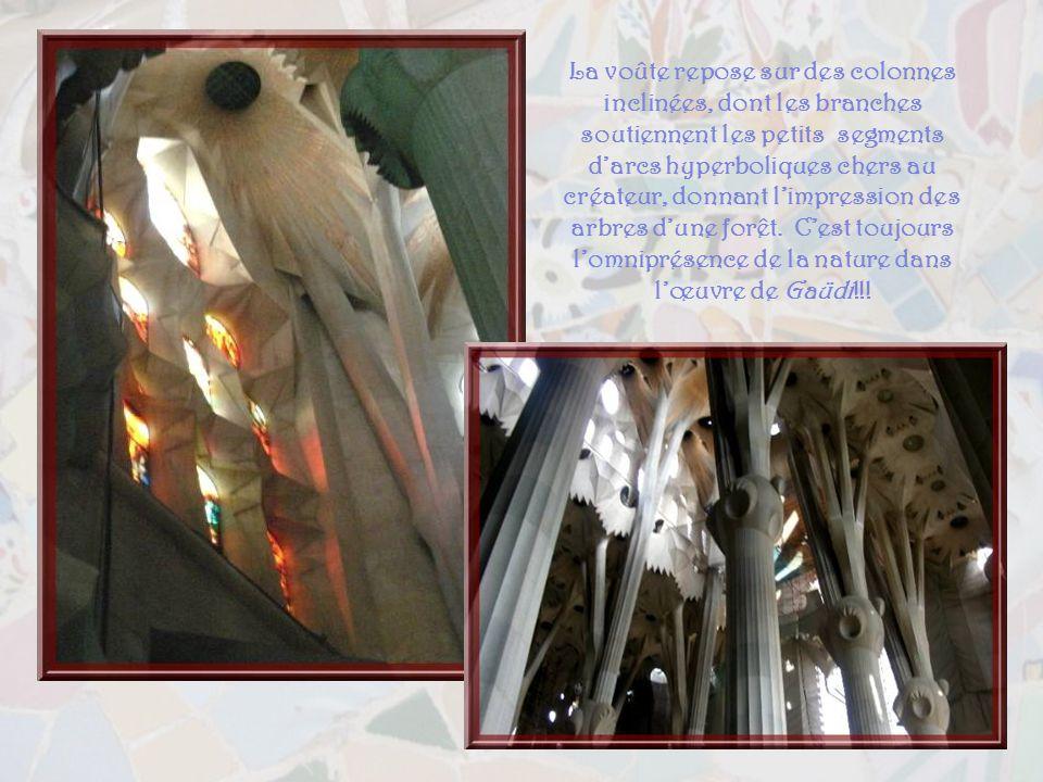 La voûte repose sur des colonnes inclinées, dont les branches soutiennent les petits segments d'arcs hyperboliques chers au créateur, donnant l'impression des arbres d'une forêt.