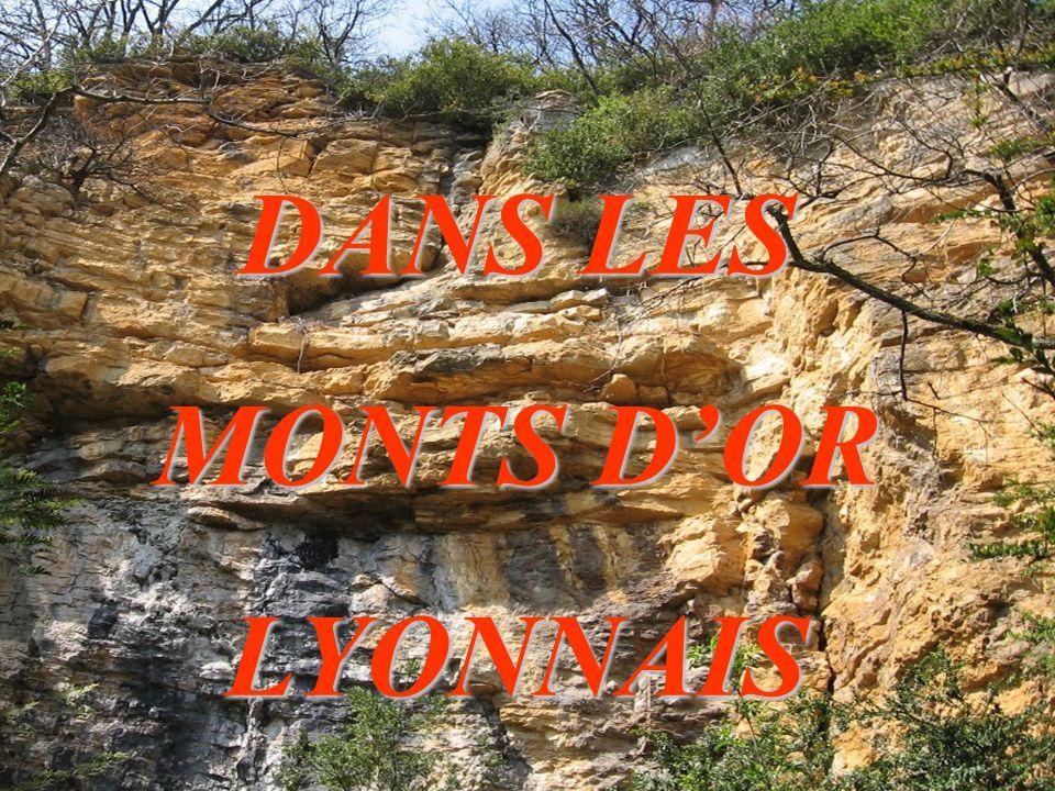 DANS LES MONTS D'OR LYONNAIS