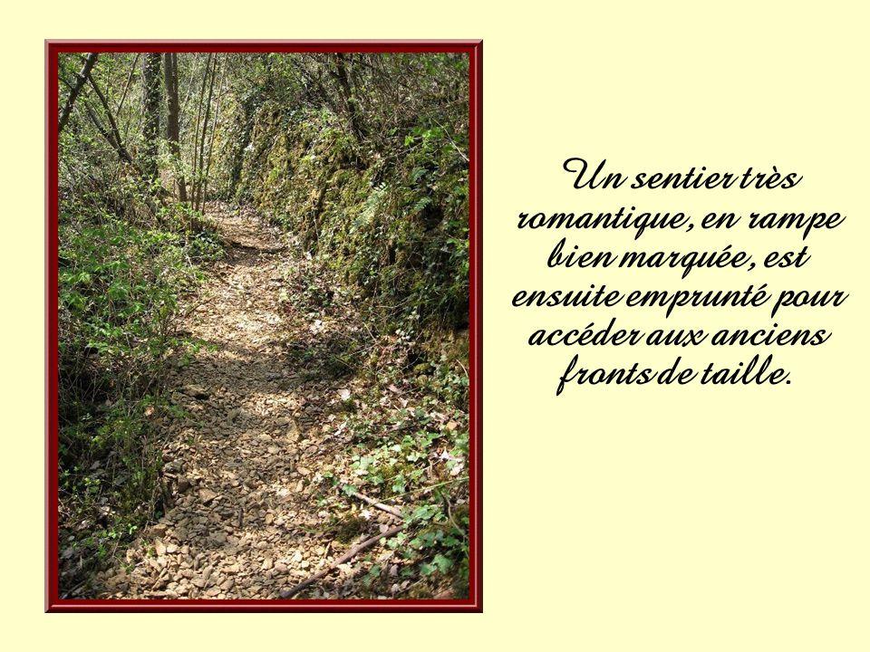 Un sentier très romantique, en rampe bien marquée, est ensuite emprunté pour accéder aux anciens fronts de taille.