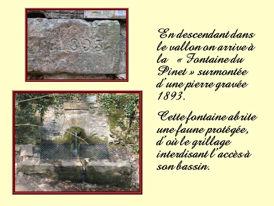 En descendant dans le vallon on arrive à la « Fontaine du Pinet » surmontée d'une pierre gravée 1893.