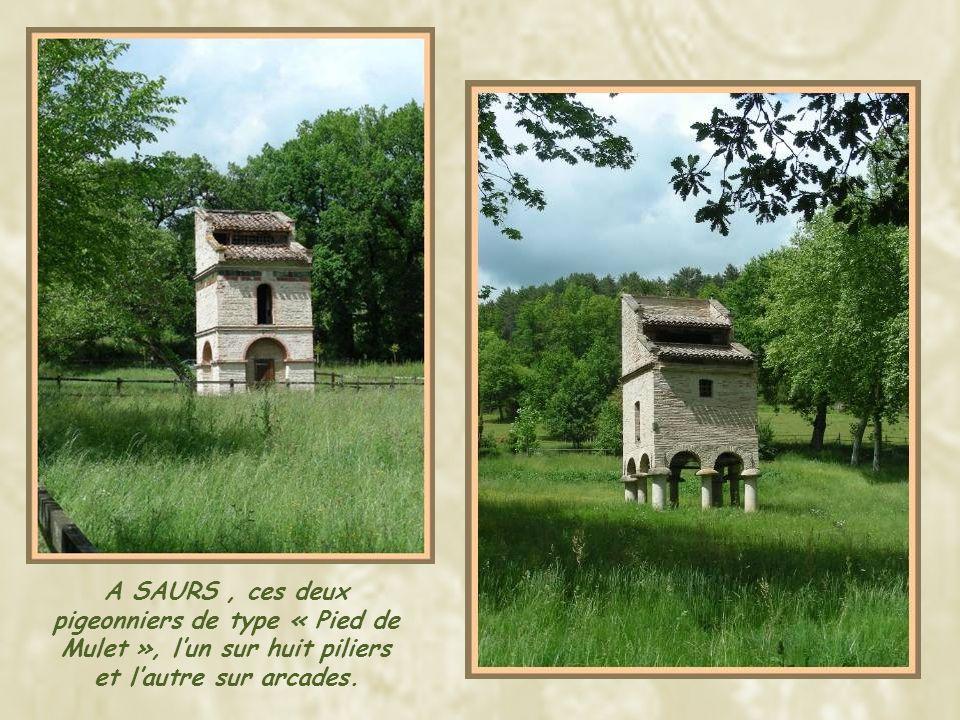 A SAURS , ces deux pigeonniers de type « Pied de Mulet », l'un sur huit piliers et l'autre sur arcades.