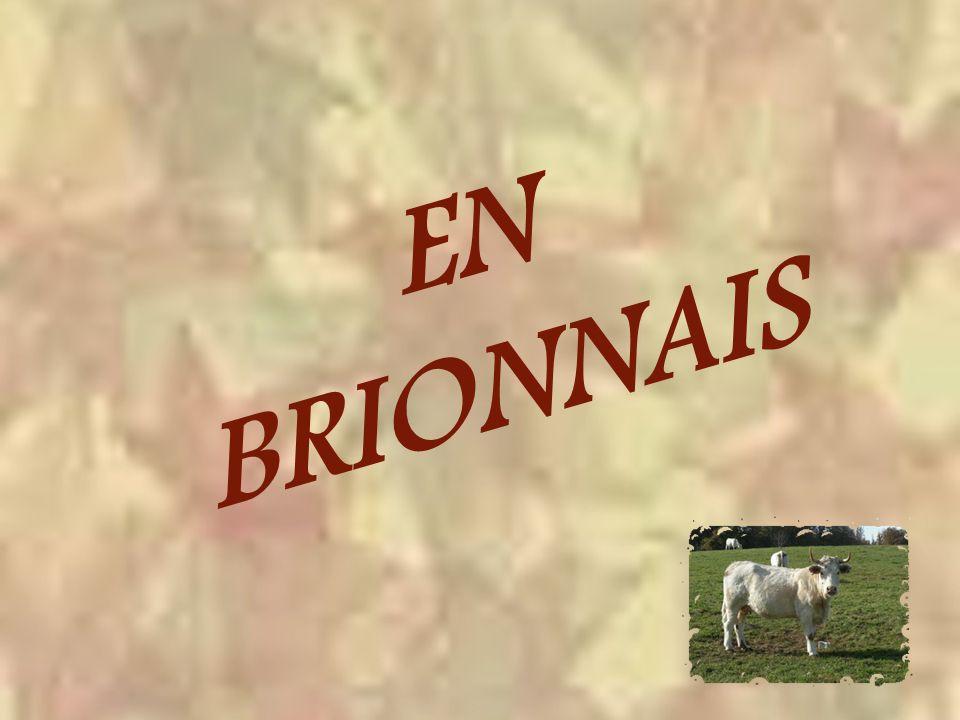 EN BRIONNAIS