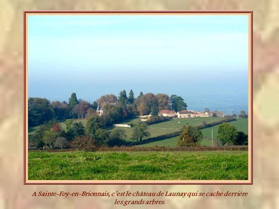A Sainte-Foy-en-Brionnais, c'est le château de Launay qui se cache derrière les grands arbres.