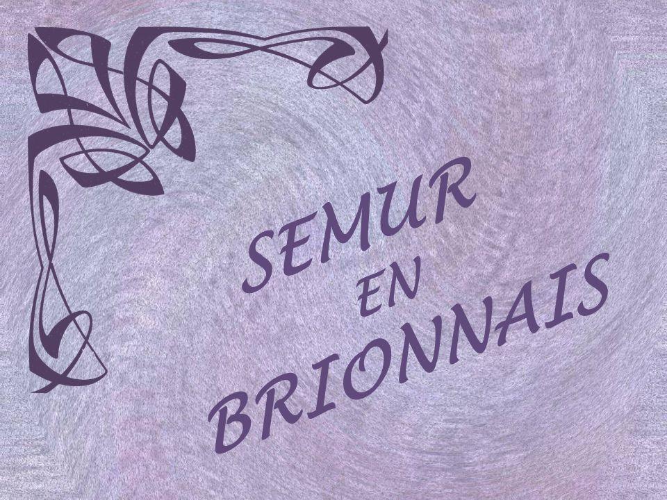 SEMUR EN BRIONNAIS