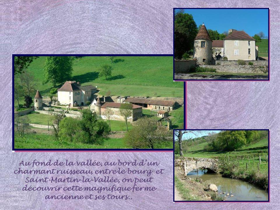 Au fond de la vallée, au bord d'un charmant ruisseau, entre le bourg et Saint-Martin-la-Vallée, on peut découvrir cette magnifique ferme ancienne et ses tours..