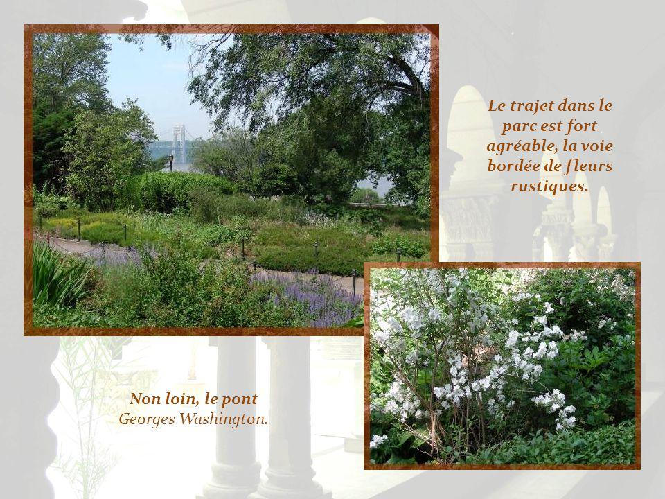 Le trajet dans le parc est fort agréable, la voie bordée de fleurs rustiques.