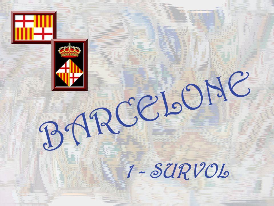BARCELONE 1 - SURVOL