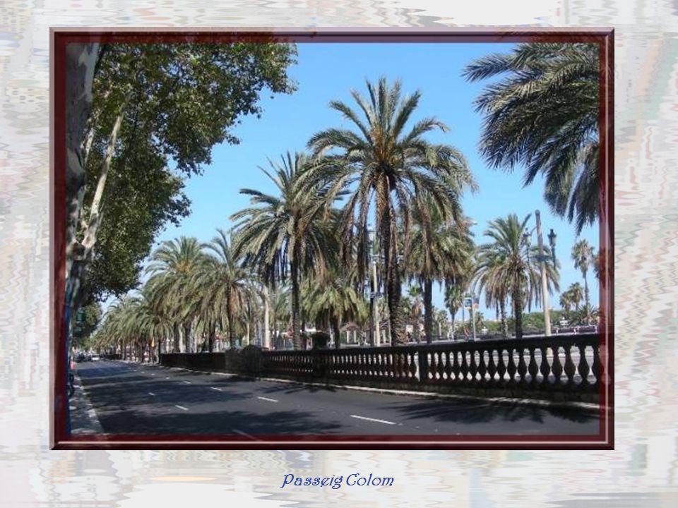 Passeig Colom