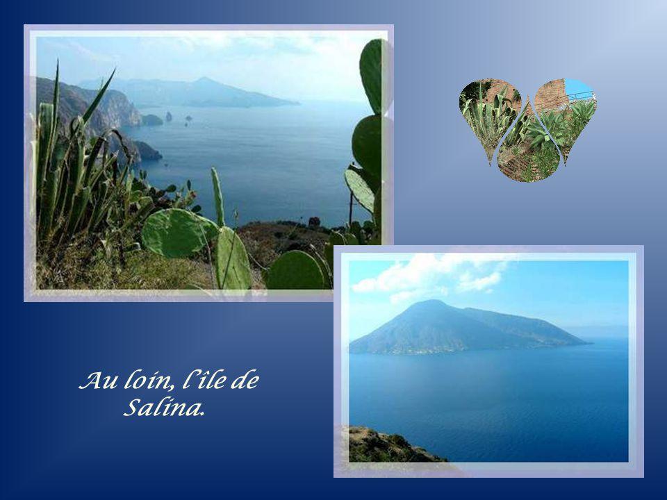 Au loin, l'île de Salina.