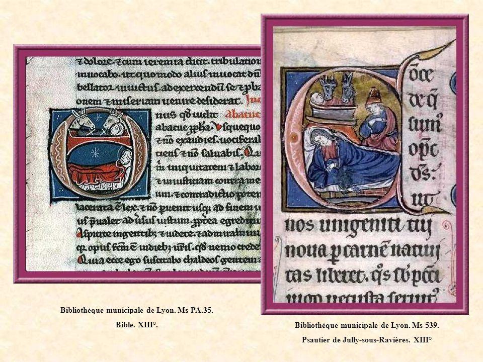 Bibliothèque municipale de Lyon. Ms PA.35. Bible. XIII°.