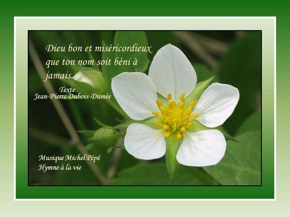 Dieu bon et miséricordieux que ton nom soit béni à jamais.