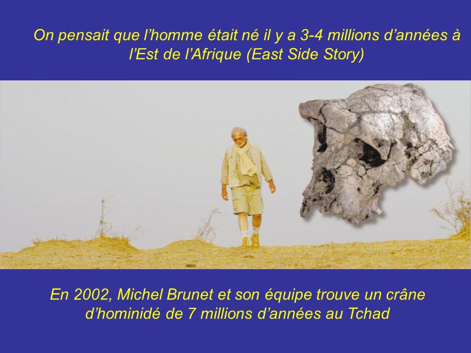 On pensait que l'homme était né il y a 3-4 millions d'années à l'Est de l'Afrique (East Side Story)