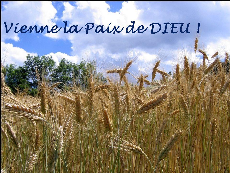 Vienne la Paix de DIEU !