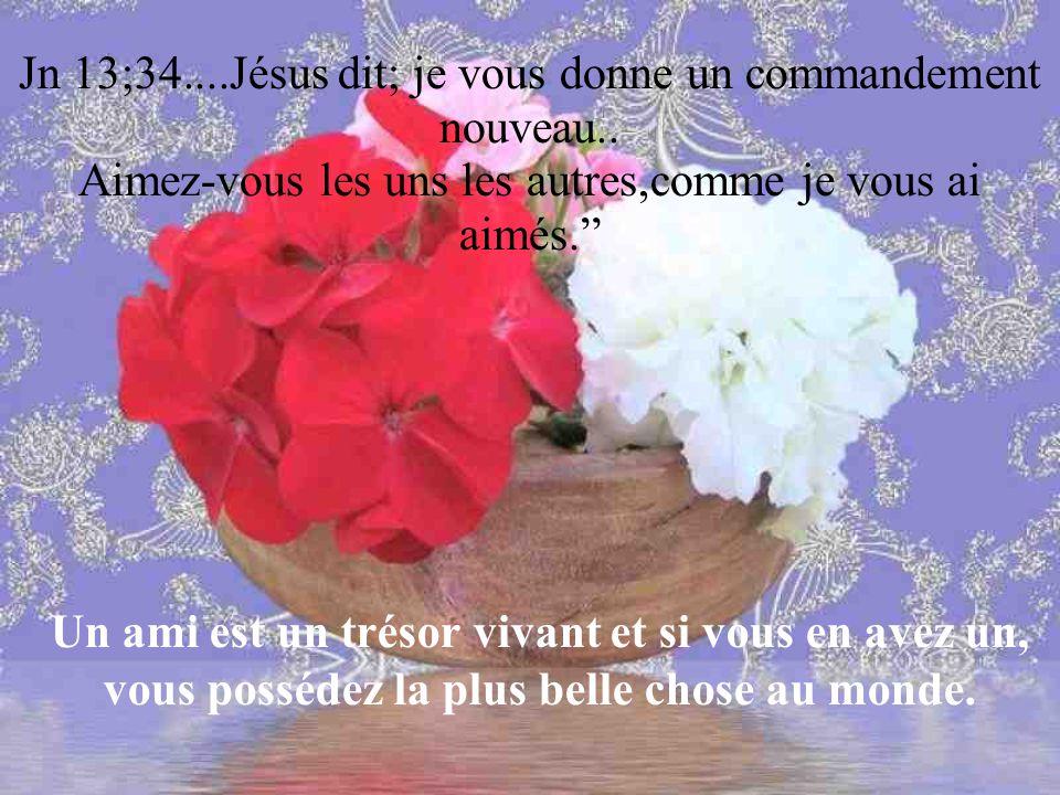 Jn 13;34....Jésus dit; je vous donne un commandement nouveau..