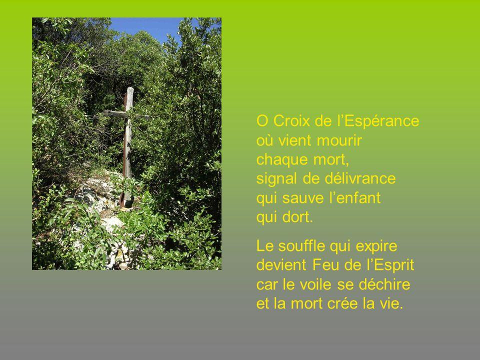 O Croix de l'Espérance où vient mourir chaque mort, signal de délivrance qui sauve l'enfant qui dort.