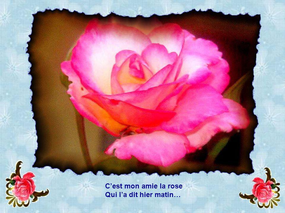 C'est mon amie la rose Qui l'a dit hier matin…