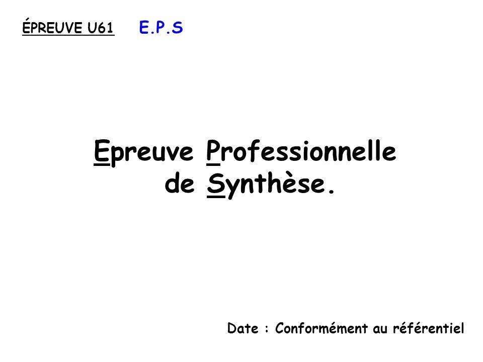 Epreuve Professionnelle de Synthèse.