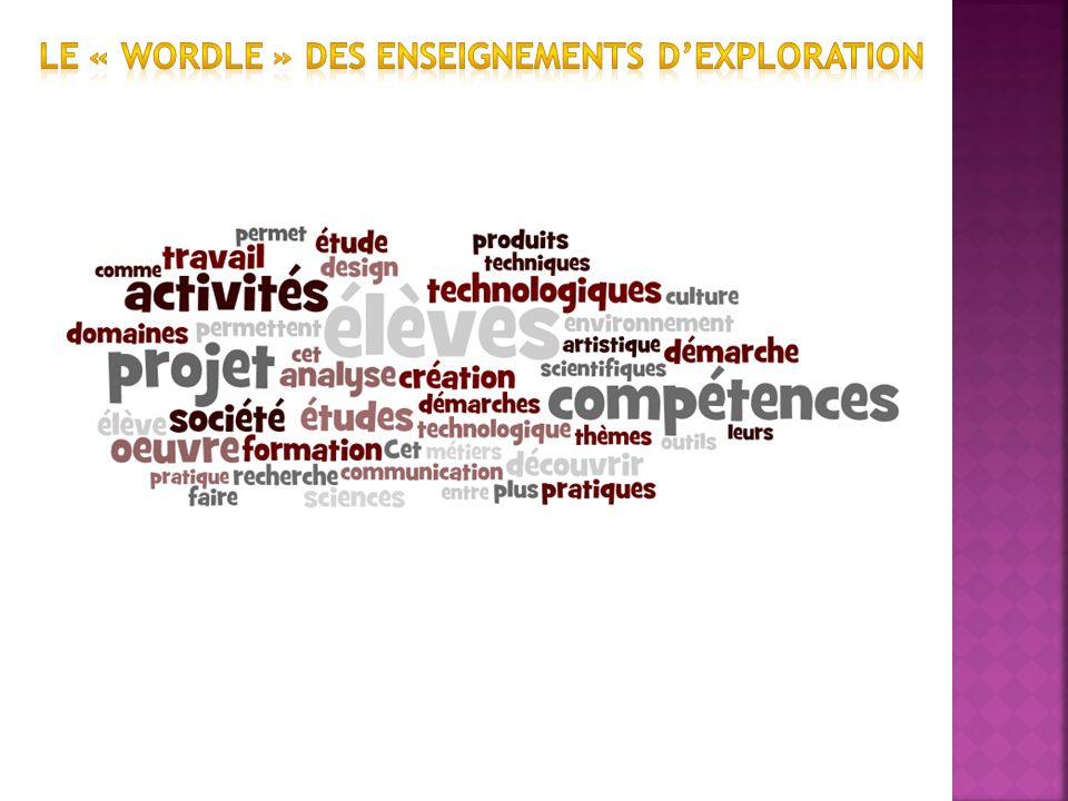 LE « wordle » des enseignements d'exploration
