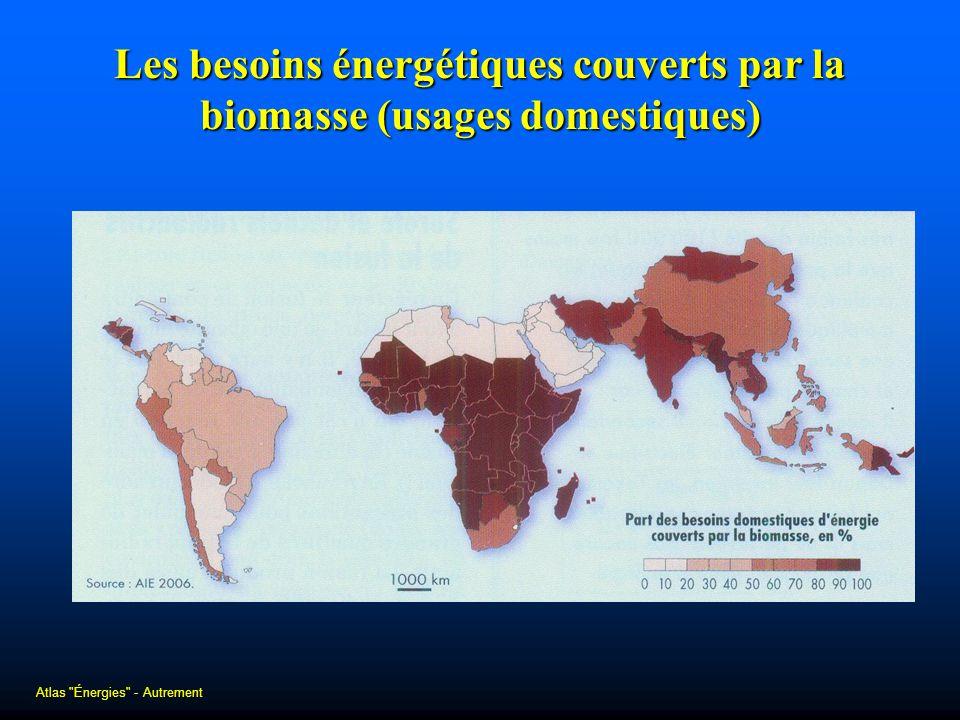 Les besoins énergétiques couverts par la biomasse (usages domestiques)
