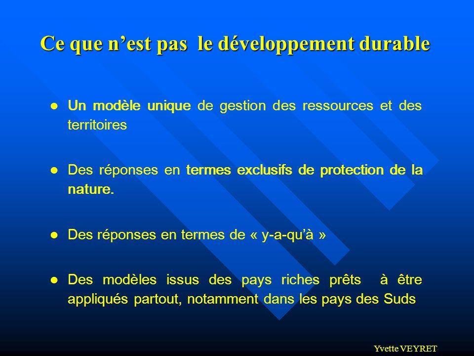 Ce que n'est pas le développement durable
