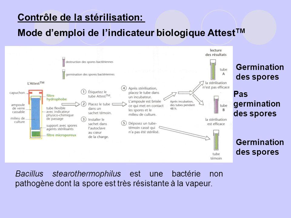 Contrôle de la stérilisation: