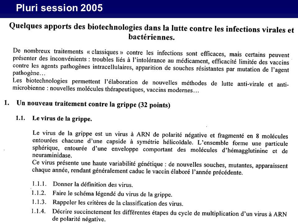 Pluri session 2005