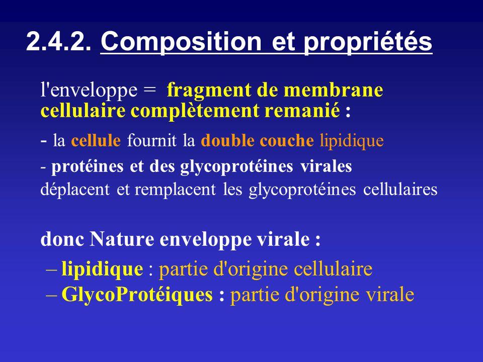 2.4.2. Composition et propriétés