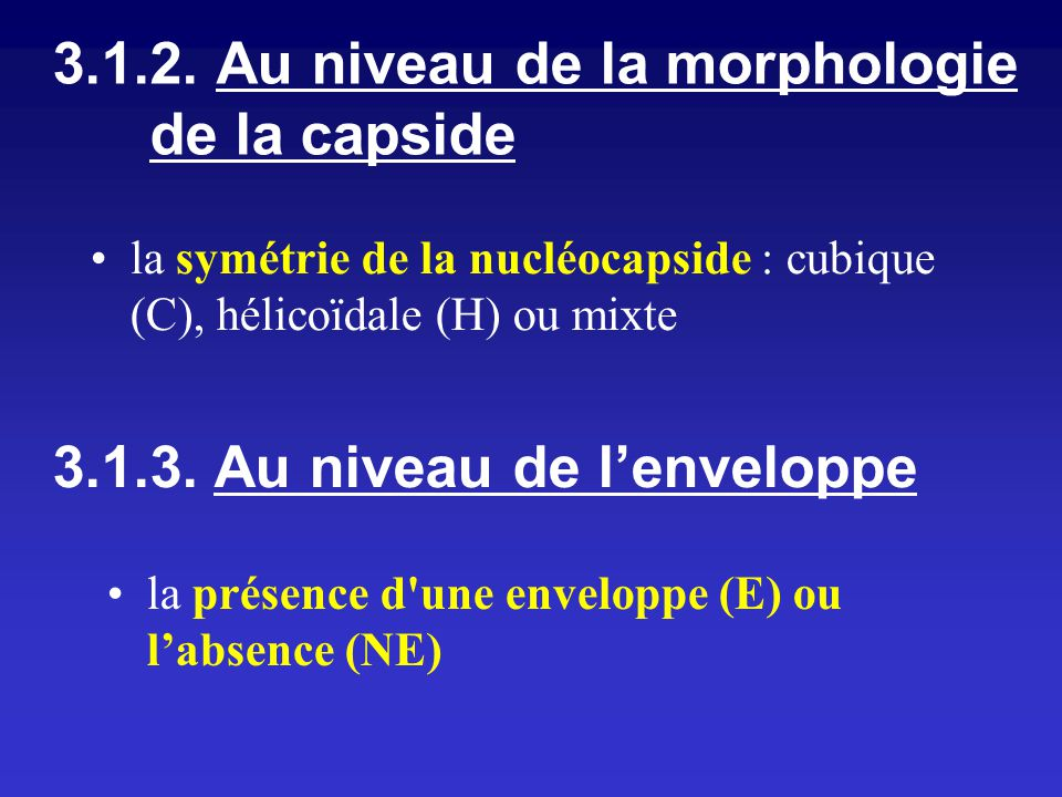 3.1.2. Au niveau de la morphologie de la capside