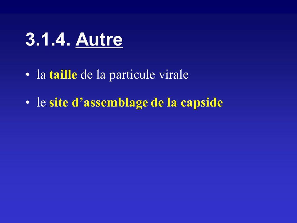 3.1.4. Autre la taille de la particule virale