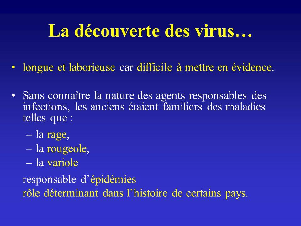 La découverte des virus…