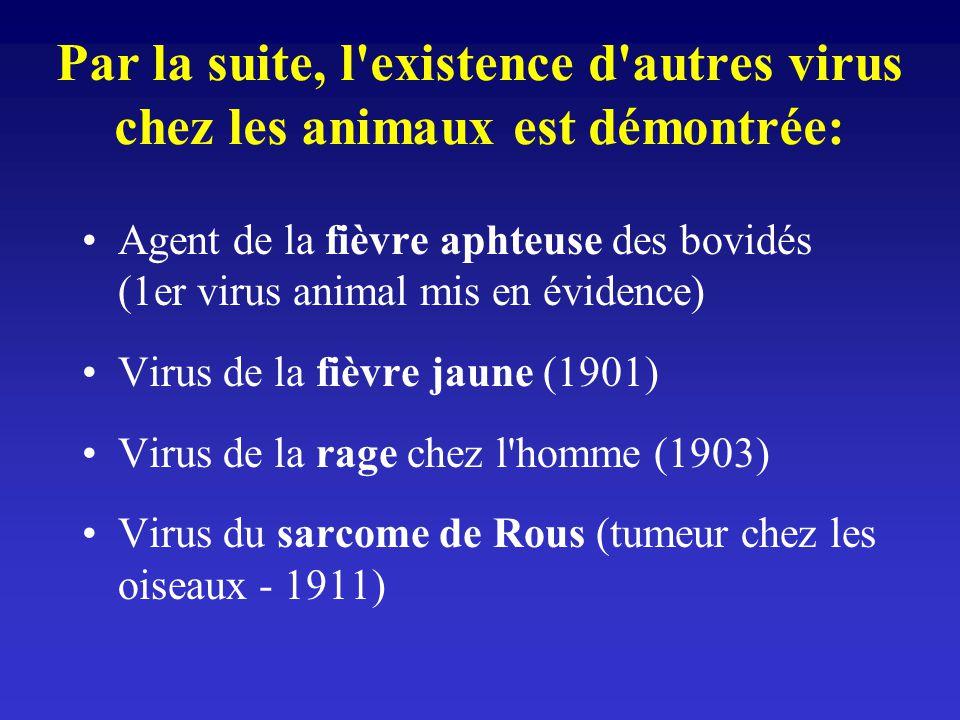 Par la suite, l existence d autres virus chez les animaux est démontrée: