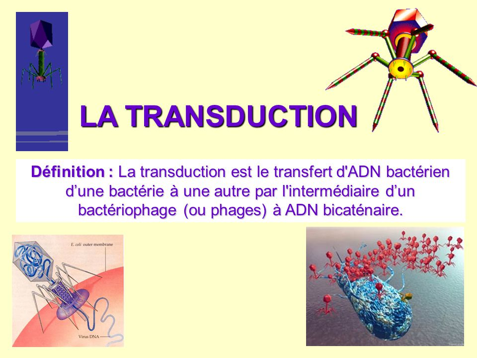 LA TRANSDUCTION
