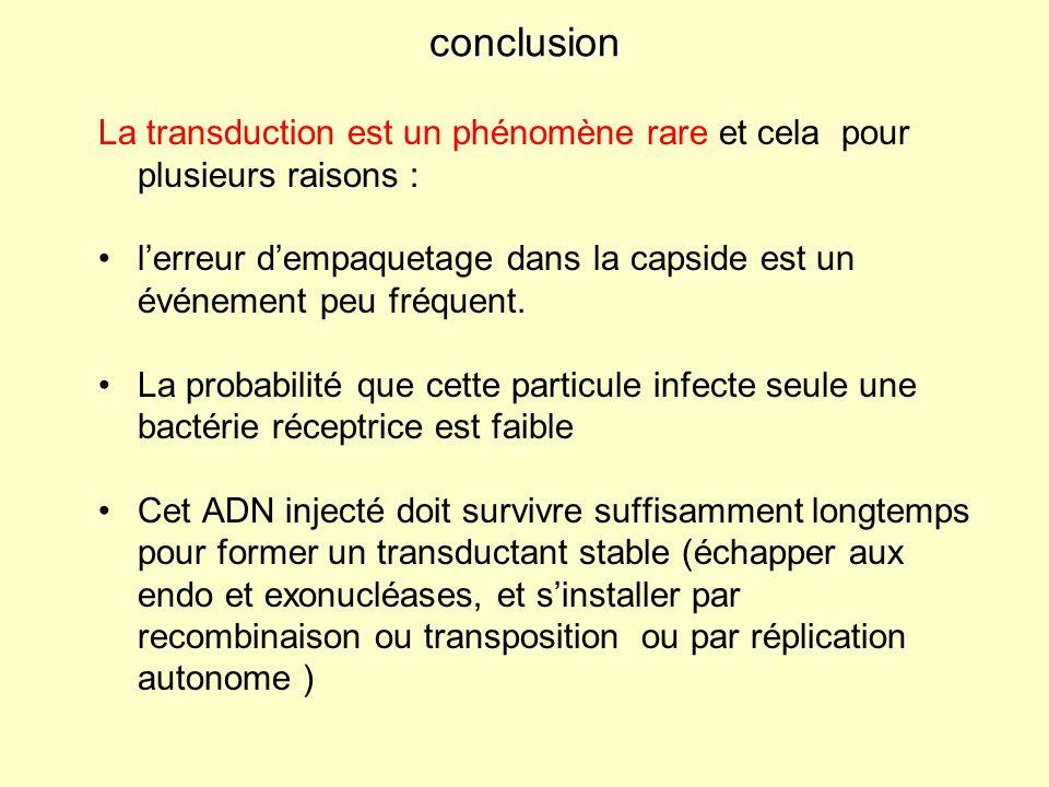 conclusion La transduction est un phénomène rare et cela pour plusieurs raisons :