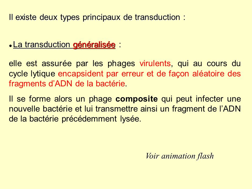Il existe deux types principaux de transduction :
