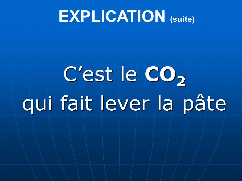 EXPLICATION (suite) C'est le CO2 qui fait lever la pâte