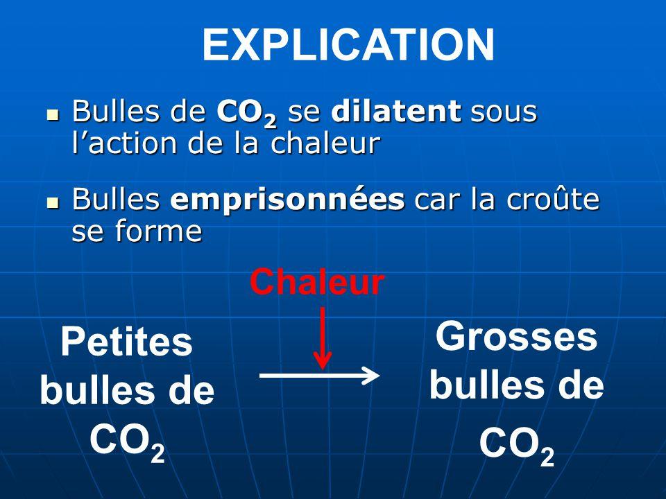 EXPLICATION Grosses bulles de CO2 Petites bulles de CO2 Chaleur