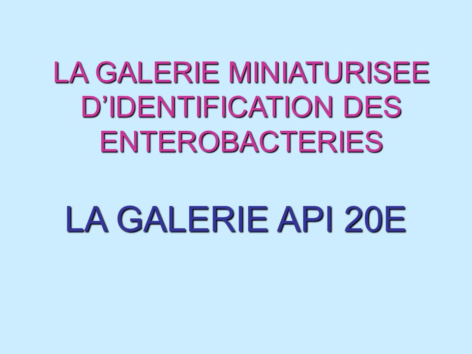 LA GALERIE MINIATURISEE D'IDENTIFICATION DES ENTEROBACTERIES