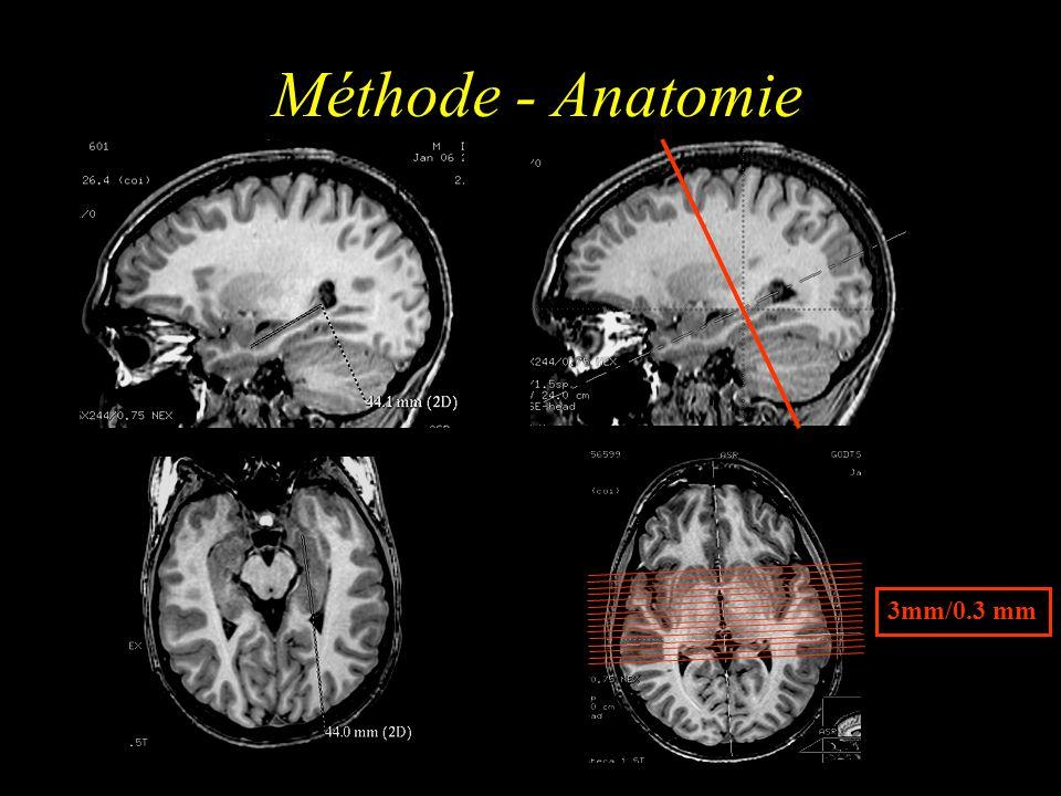 Méthode - Anatomie 3mm/0.3 mm