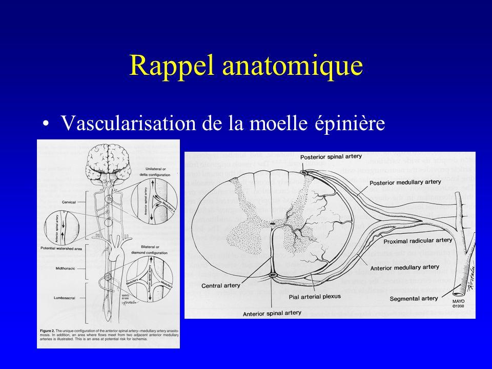 Rappel anatomique Vascularisation de la moelle épinière