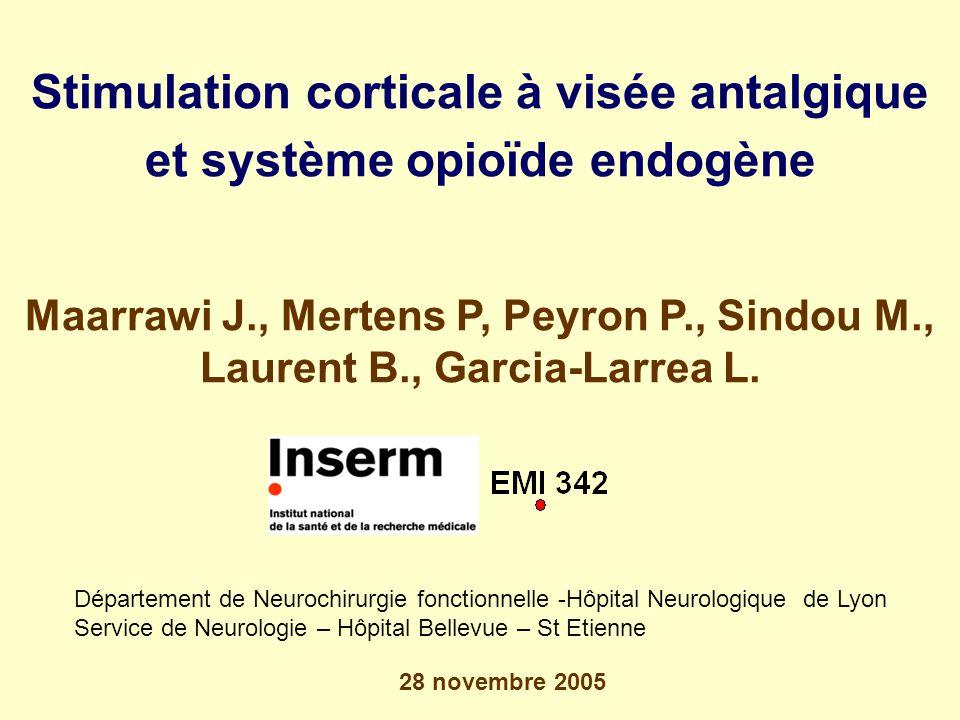 Stimulation corticale à visée antalgique et système opioïde endogène