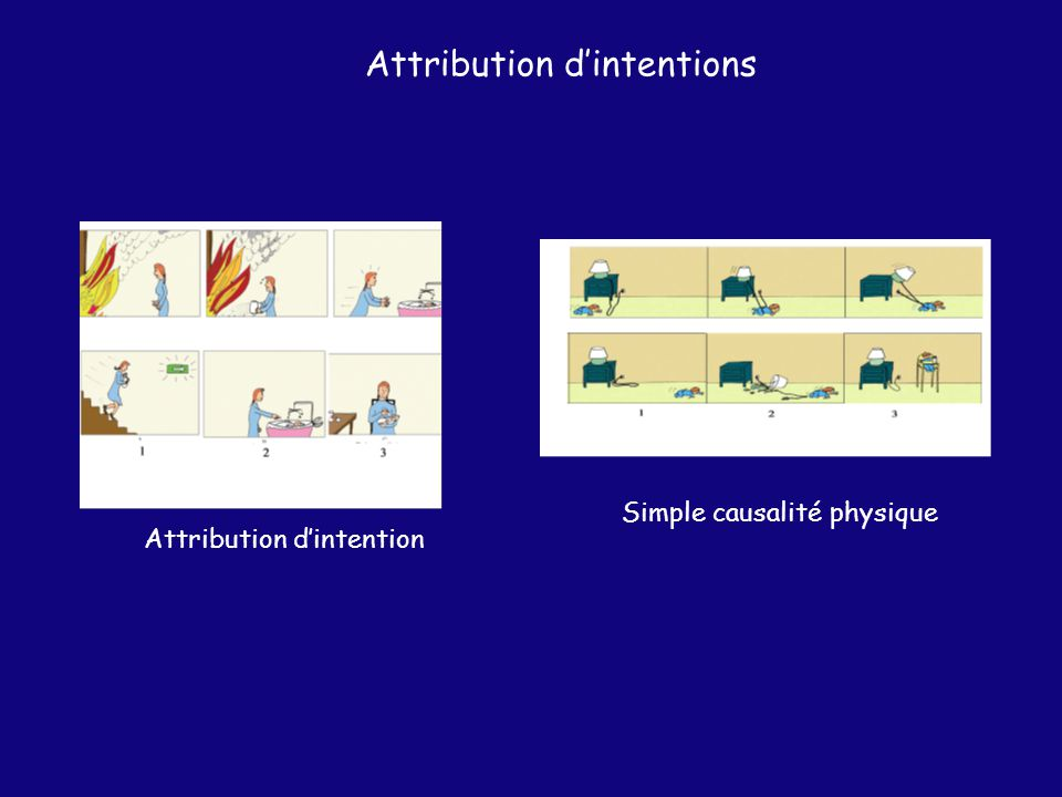 Attribution d'intentions