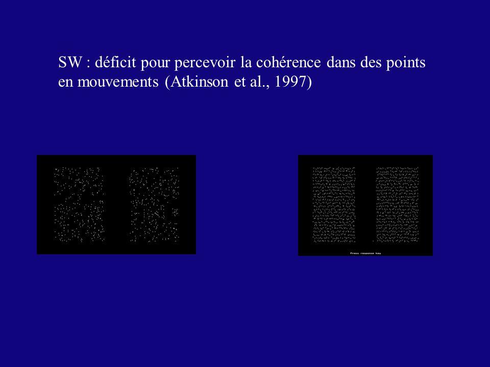 SW : déficit pour percevoir la cohérence dans des points
