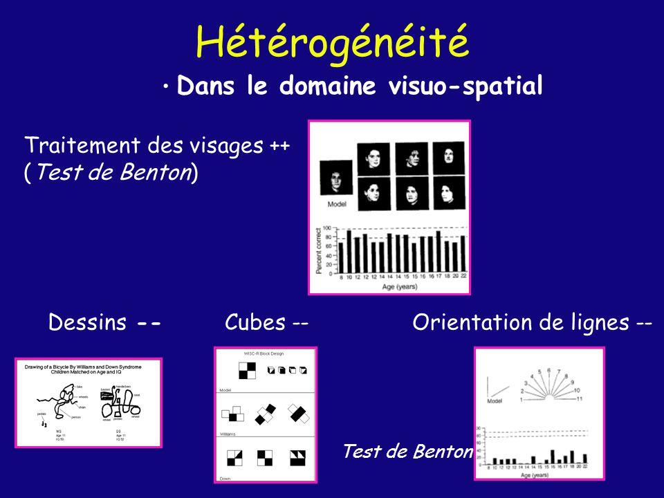 Hétérogénéité Dans le domaine visuo-spatial Traitement des visages ++