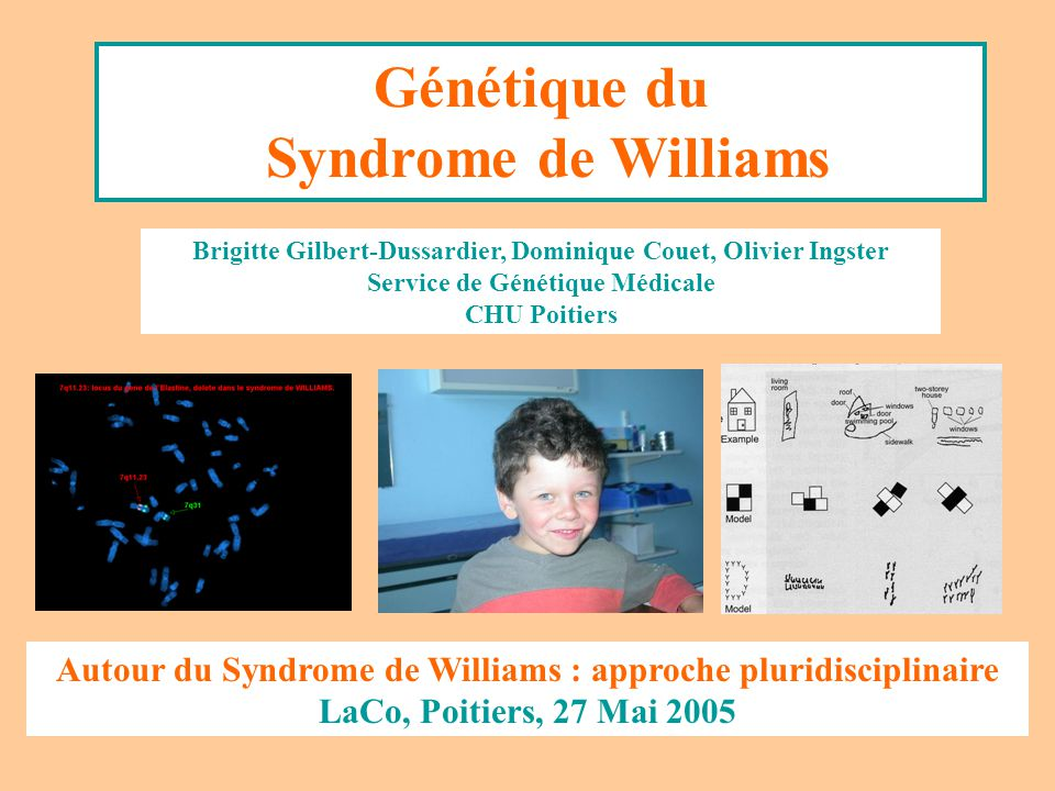 Génétique du Syndrome de Williams