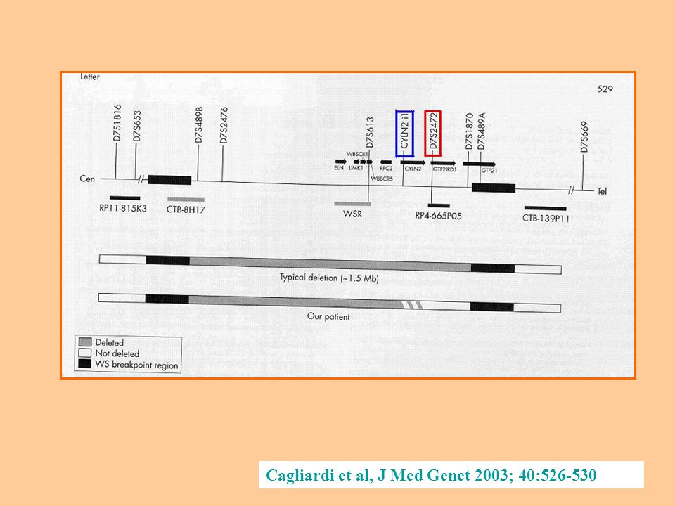 Cagliardi et al, J Med Genet 2003; 40:526-530