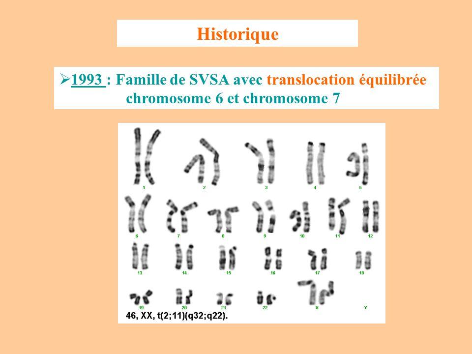 Historique 1993 : Famille de SVSA avec translocation équilibrée